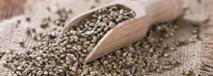 Benefits-Of-Hemp-Seeds.jpg